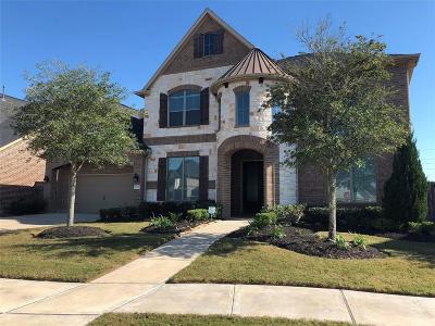 Fulshear Single Family Home For Sale: 27731 Burnett Hills Lane
