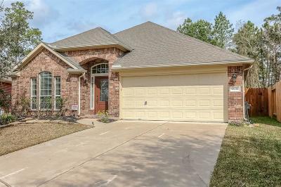 Spring Single Family Home For Sale: 21118 Dusty Glen Lane