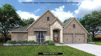 Tomball Single Family Home For Sale: 25138 Pinebrook Grove Lane