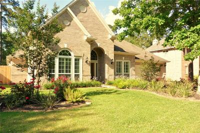The Woodlands Single Family Home For Sale: 14 Picasso Path Place