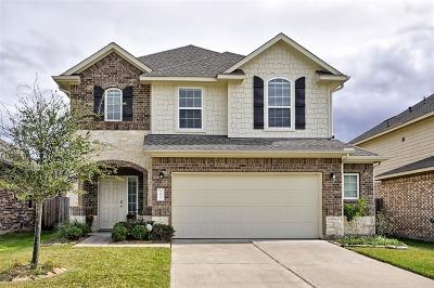 Tomball Single Family Home For Sale: 19010 Pinewood Point Lane