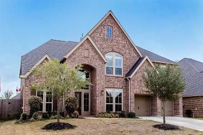 Katy Single Family Home For Sale: 28911 Yaupon Trace Drive