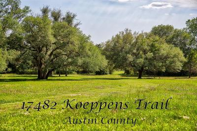 Austin County Country Home/Acreage For Sale: 17482 Koeppens Trail