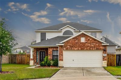 Katy Single Family Home For Sale: 19606 Green Oasis Court