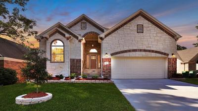Seabrook Single Family Home For Sale: 2810 Sea Ledge Drive