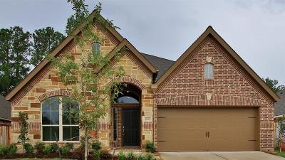 Tomball Single Family Home For Sale: 25023 Mountclair Hollow Lane