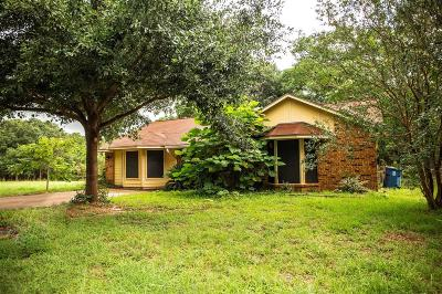 Bellville Single Family Home For Sale: 153 Machemehl Drive
