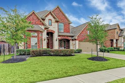 Single Family Home For Sale: 8726 Osiris Core Lane