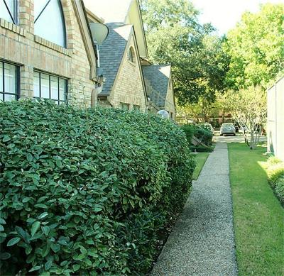 Houston Condo/Townhouse For Sale: 2425 Holly Hall Street #91