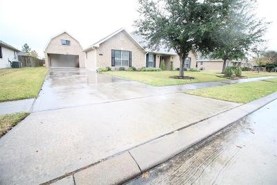 Manvel Single Family Home For Sale: 3822 Saddle Horn Court