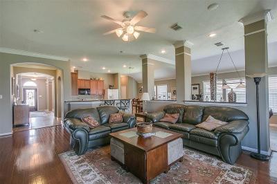 Rosenberg Single Family Home For Sale: 919 Aqua Vista Lane