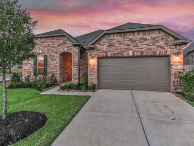 Katy Single Family Home For Sale: 1123 Penny Ranch Lane