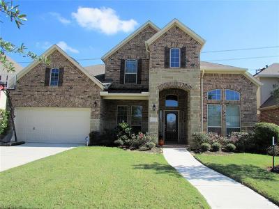 Riverstone Single Family Home For Sale: 4935 Blackwater Lane