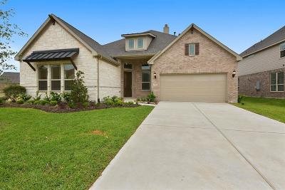 Katy Single Family Home For Sale: 23511 Kingsford Shadow Lane