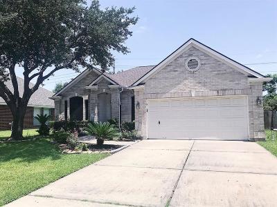 Houston Single Family Home For Sale: 14710 Cross Junction Street