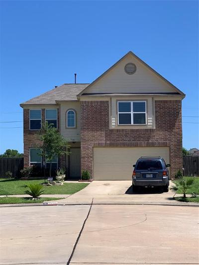 Katy Single Family Home For Sale: 5138 Lamppost Hill Court