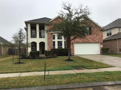Friendswood Single Family Home For Sale: 4348 Staghorn Lane