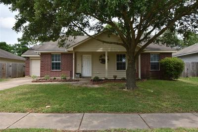 Hockley Single Family Home For Sale: 24122 Wild Horse Lane