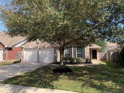 Spring Single Family Home For Sale: 20522 Spring Mission Lane