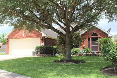 Katy Single Family Home For Sale: 2711 Pine Trail