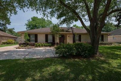 Beaumont Single Family Home For Sale: 1160 Brandywine Street