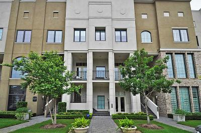 Sugar Land Condo/Townhouse For Sale: 1407 Lake Pointe Parkway