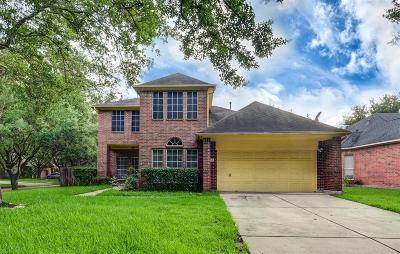 Sugar Land Single Family Home For Sale: 4638 Jaymar Drive