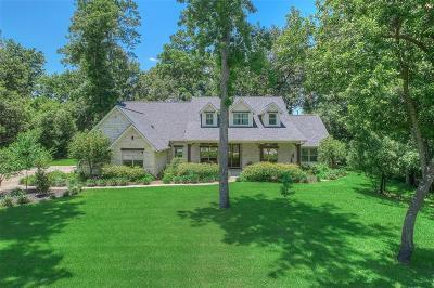 Spring Single Family Home For Sale: 27031 Star Gazer Way