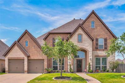 Pearland Single Family Home For Sale: 3227 Tamara Creek Lane