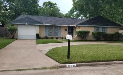 Houston Single Family Home For Sale: 818 Dewalt Street