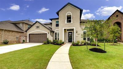 Sugar Land Single Family Home For Sale: 5310 Clouds Creek Lane