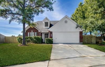 Single Family Home For Sale: 16106 Dock Bar Court