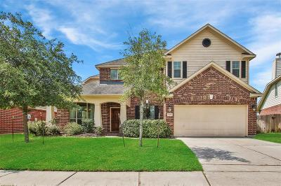 Tomball Single Family Home For Sale: 9723 Elizabeths Glen Lane