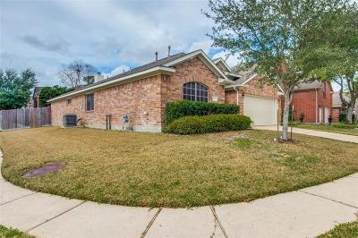 Houston Single Family Home For Sale: 14007 Hillingdale Lane