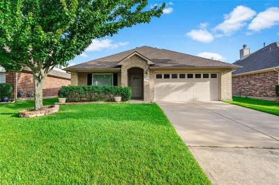 Tomball Single Family Home For Sale: 12118 Piney Bend Drive