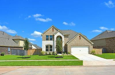 Sugar Land Single Family Home For Sale: 2423 Flowering Brook Lane