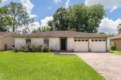 Friendswood Single Family Home For Sale: 16910 David Glen Drive