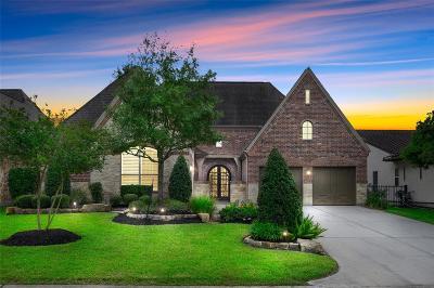 Spring Single Family Home For Sale: 95 E Crystal Canyon Circle