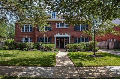 Sugar Land Single Family Home For Sale: 3203 Stoney Mist Drive
