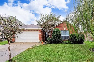 Katy Single Family Home For Sale: 20311 Avery Point Drive