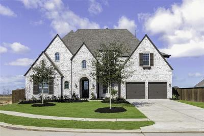 Katy Single Family Home For Sale: 7410 Kinglet Ct