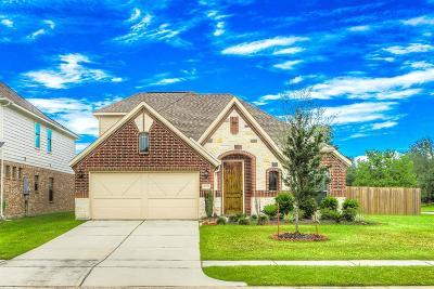 Tomball Single Family Home For Sale: 17819 Bella Ava Drive