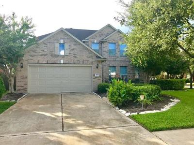 Pearland Single Family Home For Sale: 4104 Oak Point Drive