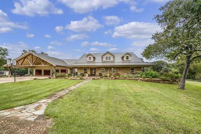 Austin County Farm & Ranch For Sale: 6892 Palm Road