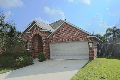 League City, League Single Family Home For Sale: 866 Pebblebank Lane