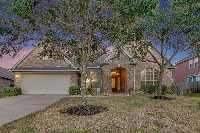 Southern Trails Single Family Home For Sale: 3005 Willow Brook Court