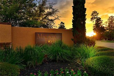 Shenandoah Single Family Home For Sale: 1483 Torrijos Court