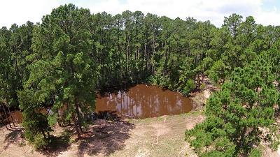 New Ulm Farm & Ranch For Sale: 2012 Weishuhn Road