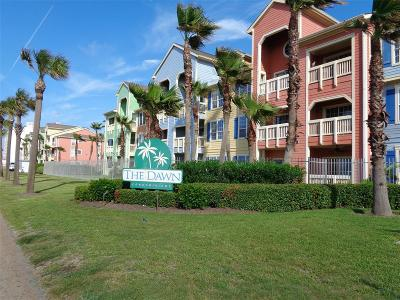 Galveston Condo/Townhouse For Sale: 7000 Seawall Boulevard #1113