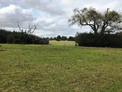 Austin County Country Home/Acreage For Sale: Zubicek